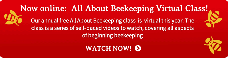 All About Beekeeping virtual class